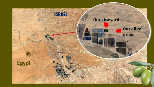 View The Greening of Israel\'s Negev Via Google Maps! – Israel Today