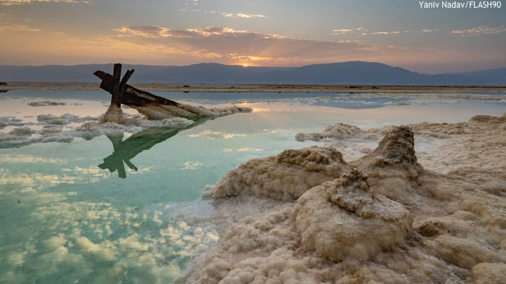 COMMENTARY: Dead Sea Comes to Life! - Israel Today