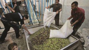 Economic Cooperation With Gaza