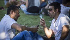 Is Cannabis Kosher?