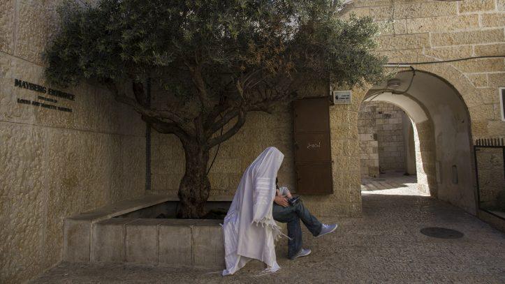 Rabbis find Jesus.