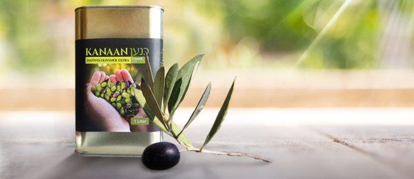 Kanaan Olive Oil