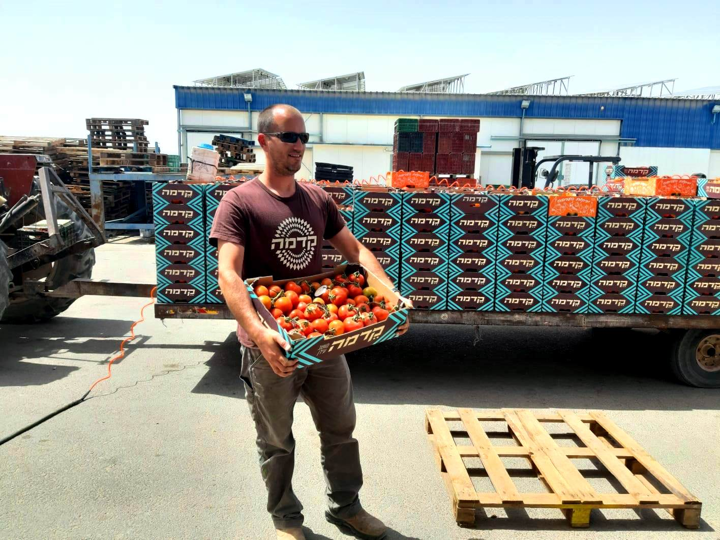 Israeli farmers donate produce for Passover