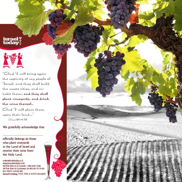 Plant a grapevine and receive a personalized certificate with your name