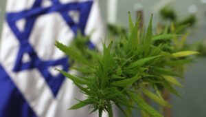 Cannabis residue found on Israelite temple altar.