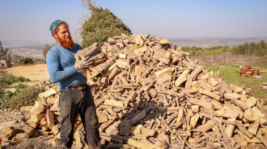 A Jewish settler cuts wood for the winter