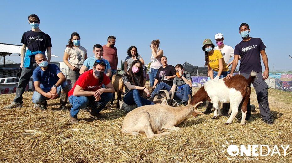 Volunteering in Israel just got a lot more interesting.
