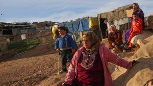 Israels Bedouin community is very unique