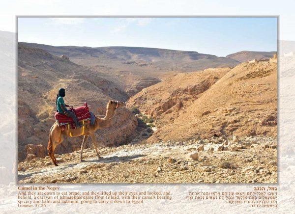 Hebrew wall calendar