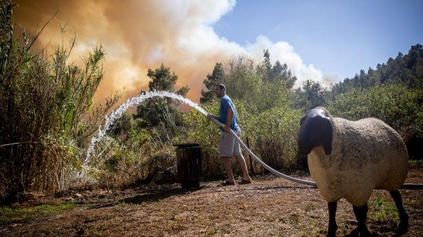 Some 10,000 Israelis were forced to evacuate their homes as the fire raged in and around small communities to the west of Jerusalem.