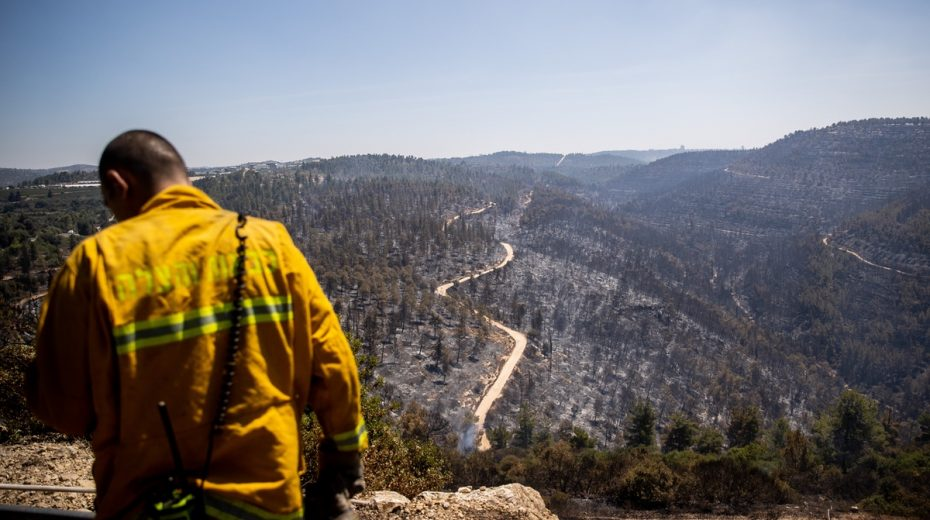 Jerusalem wildfire was caused by arson